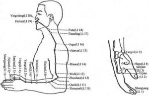 Large Intestine meridian