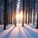 Acupuncture Winter Poem